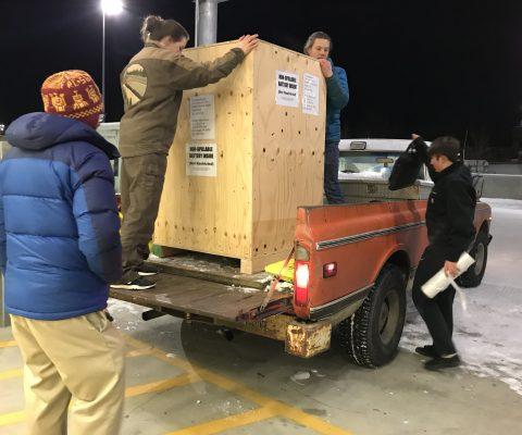Robot Shipped